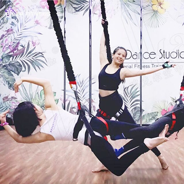 Complete Bungee Fitness Set For Ariel Resistance Exercise Workouts